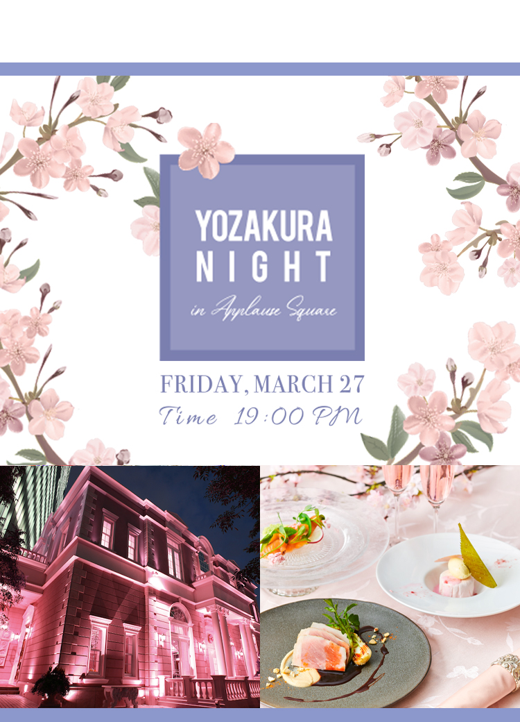 YOZAKURA NIGHT